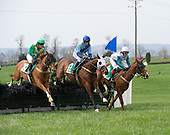 Middleburg Spring Races - 04/19/2014