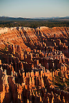 USA, Utah, dawn light on landscape at Bryce Point in Bryce Canyon National Park.