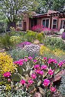 Charles Mann southwest garden Santa Fe - photos