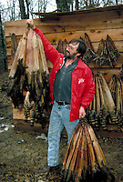 Trapper with raccoon and other furbearer pelts, Pulaski County, Arkansas
