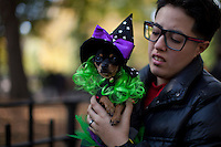 People take part during the 23rd Annual Tompkins Square Halloween Dog Parade in New York City. October 26, 2013, Photo by Kena Betancur / VIEWpress.