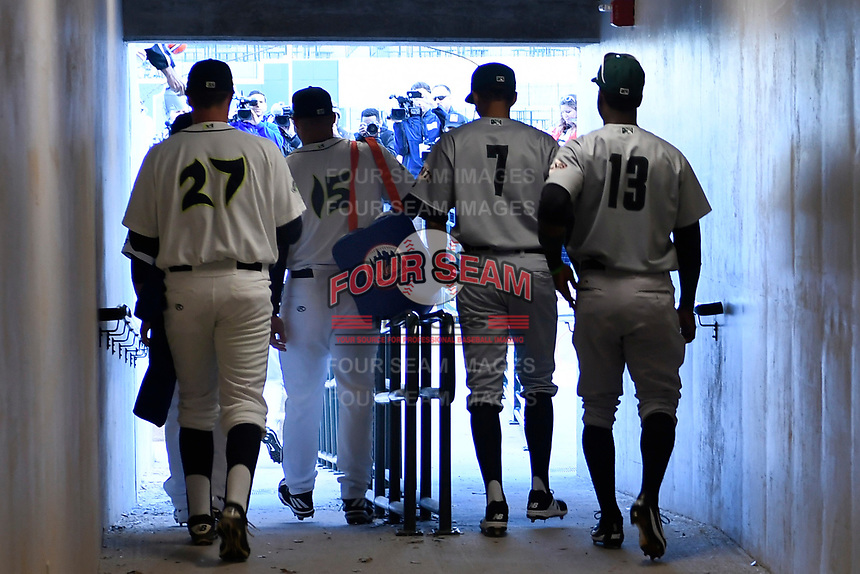 Left fielder Tim Tebow (15) of the Columbia Fireflies enters the field from the tunnel to a flock of cameras in his first Class A game against the Augusta GreenJackets on Opening Day, Thursday, April 6, 2017, at Spirit Communications Park in Columbia, South Carolina. (Tom Priddy/Four Seam Images)