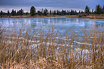 Washington, Cheney, Turnbull Wildlife Refuge. Frozen ponds with Ice polished by the wind reflects the stormy skies of winter. HDR