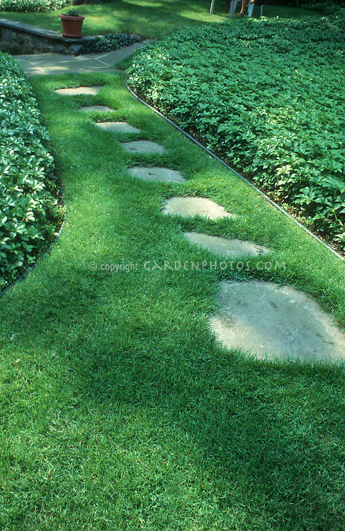 Lawn with path walkway stepping stones plant flower for Stone path in grass