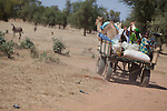 A group of Fulani ride a camel cart through the village market of Bourro in northern Burkina Faso.