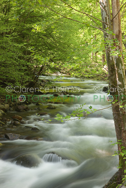 Cascades on the Middle Prong Little River, Great Smoky Mountains National Park