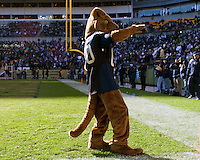 Pitt mascot ROC. The WVU Mountaineers defeated the Pitt Panthers 35-10 at Heinz Field, Pittsburgh, Pennsylvania on November 26, 2010.