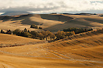 Fall fields in the Palouse Valley in Washington