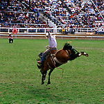Pendleton, Oregon Round-up Rodeo
