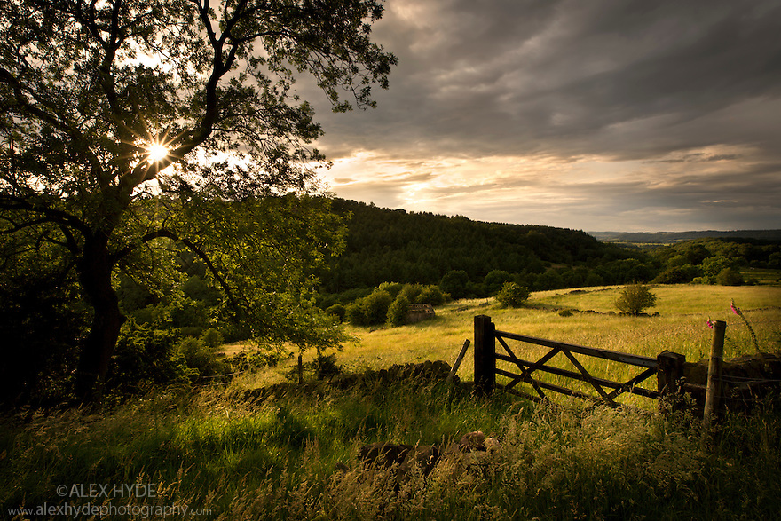 Hay meadows in storm light, Birchover, Peak District National Park, Derbyshire, July.