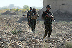 Afghan soldiers walk through a field while on patrol in the village of Pashmul in Zhari district, Kandahar province, Afghanistan. Canadian troops and Afghan soldiers fight daily skirmishes with the Taliban for control of the district, where the hardline movement originated in the early 1990s. Sept. 28, 2008. DREW BROWN/STARS AND STRIPES