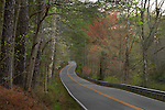 Winding scenic country road passing through woods in Springtime. Vibrant Spring foliage along the wooded road.  James City County, Virginia. Great roads &amp; scenic drives.
