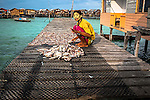 A Bajau woman,with rice face pack to protect her skin from the water's glare, arranges the fish for drying
