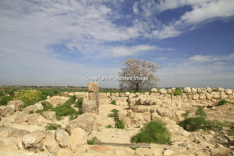 Israel, Tel Batash in the Shephelah, remain of a four room house at the Biblical city Timnah