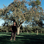Andrew Foote who owns 10 acres of cider orchards in Somerset and is now preparing to grub up his apple orchards because of loss of subsidy when the single farm payment  system is introduced because his land is under trees.