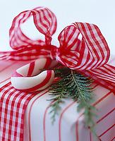 A shoot of cedar and a candy cane are used to add a scented dimension to a red and white wrapped gift