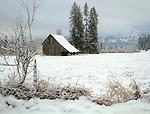 Idaho, North, Panhandle, Silver Valley, Cataldo. An old barn in winter.