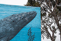 "Detail of the whale mural on a municipal water district building along San Francisco Bay.  The mural is signed ""Greenwood 2008"""