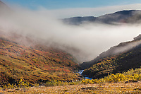 Morning fog over a backpacking tent campsite on a mountain ridge along Arrigetch creek, Arrigetch Peaks, Gates of the Arctic National Park, Alaska.
