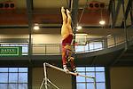2017 OU v TWU Gymnastics