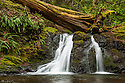 Rustic Falls, Moran State Park, Orcas Island; San Juan Islands, Washington.