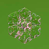 Snowflakes - Stellar Plates