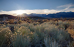 California, east central, Lee Vining. Sunset over the Sierra Nevada Mountains from the shore of Mono Lake in autumn.