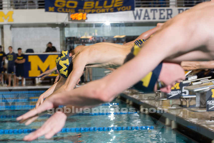 10/25/14  The University of Michigan men's swimming and diving team; victory at the Big Quad Meet at Canham Natatorium in Ann Arbor, Mich., on October 25, 2014.<br /> <br /> Michigan 183, Texas 170; Michigan 237, Louisville 116; Michigan 242.50, Indiana 110.50