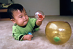 Palo Alto, CA Japanese baby boy, ten-months- old, studying ball toy