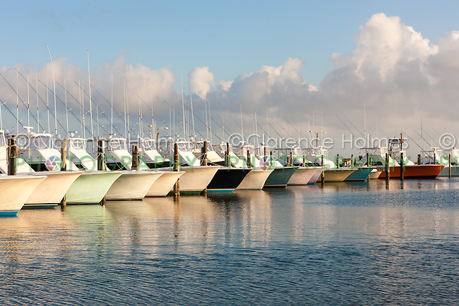 Oregon inlet fishing center fleet clarence holmes for Oregon inlet fishing center