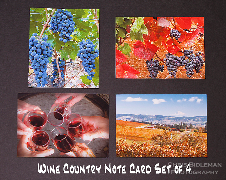 "Wine Country note cards.  Set of 4 cards that are 4.25"" x 5.5"" in size.  Blank inside and includes mailing envelope."