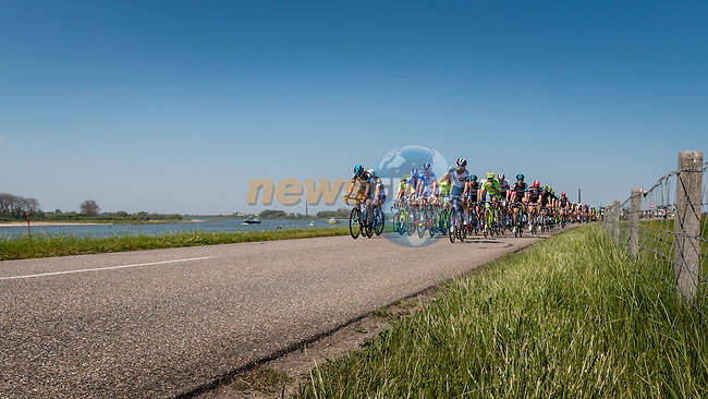 Front of the peloton on the Waaldijk at Gendt with 180 km to go, stage 3 from Nijmegen to Arnhem running 190 km of the 99th Giro d'Italia (UCI WorldTour), The Netherlands, 8 May 2016. Photo by Pim Nijland / PelotonPhotos.com   All photos usage must carry mandatory copyright credit (Peloton Photos   Pim Nijland)