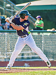 1 September 2014: Vermont Lake Monsters infielder Max Kuhn at bat against the Tri-City ValleyCats at Centennial Field in Burlington, Vermont. The ValleyCats defeated the Lake Monsters 3-2 in NY Penn League action. Mandatory Credit: Ed Wolfstein Photo *** RAW Image File Available ****