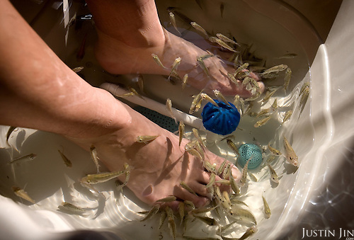 """A man receives """"fish massage"""" in Beijing, which is getting ready to host the 2008 Olympics. The fish feed on the dead skin of the feet."""