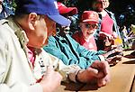 Los Altos' Veterans Day picnic