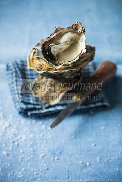 France, Manche (50), Blainville-sur-Mer,  Hu&icirc;tres de Normandie  de Louis Tessier ostr&eacute;iculteur <br /> // France, Manche, Blainville sur Mer, Louis Tessier oyster grower,  Oysters from Normandy