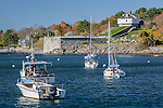 Autumn color in Kittery Harbor, Kittery, South Coast, ME