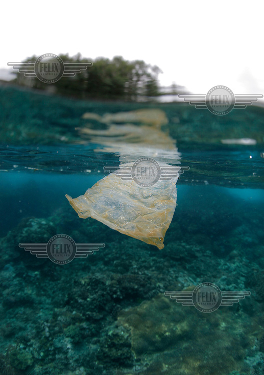Plastic floating in the ocean, near the town of Padang Bai.