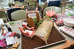 The College of Arts and Sciences  built a model of the plant biology department's learning garden as part of their entry into this year's gingerbread house decoration competiiton. Photo by Ben Siegel