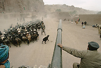 A tank driving fast escaping the fight in Bamiyan. .Army force of warlord Ahmad Shah Massoud (Jamiat-e-Islami and mercenary of Arakat-e-Islami) running away from the Karim Kalili Hezb-e-Wahdat Islami Hazara Mujahedins force in the Bamiyan valley in 1995..Mass exodus and hundreds of causality on the local population escaping the fight in Bamiyan.