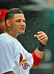 8 March 2012: St. Louis Cardinals' catcher Yadier Molina stands in the dugout during a Spring Training rain delayed game against the Boston Red Sox at Roger Dean Stadium in Jupiter, Florida. The Cardinals defeated the Red Sox 9-3 in Grapefruit League action. Mandatory Credit: Ed Wolfstein Photo