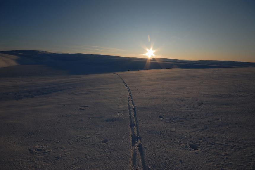 Skispor i nysnø,ski,Damtjønna,Budal,Forollhogna,Damtjønnbua,solnedgang,sunset,winter,vinter