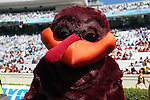 04 October 2014: Virginia Tech mascot. The University of North Carolina Tar Heels hosted the Virginia Tech Hokies at Kenan Memorial Stadium in Chapel Hill, North Carolina in a 2014 NCAA Division I College Football game. Virginia Tech won the game 34-17.