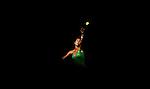 Australia Tennis Open 2009