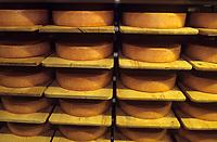 Europe/Suisse/Saanenland/Gstaad: Affinage du gruyère de montagne à la laiterie de Gstaad -Fromagerie: Molkerei Gstaad