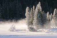 Winter landscapes in Yellowstone National Park