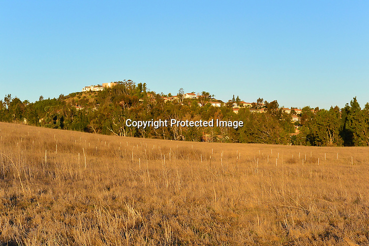 Stock Photo of Peters Canyon