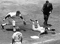 San Francisco Giants vs. St. Louis Cardinals 1968..Julian Javier is tagged out at first base by Giant pitcher Gaylord Perry after Javier was caught in a rundown.(PHOTO by Ron Riesterer 1968)