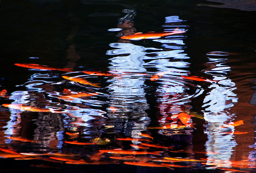 Reflections at Tirta Empul Temple,Bali
