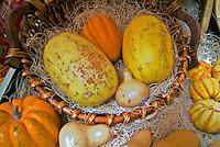 Farm-fresh, produce, Squashes, genus Cucurbita, native to Mexico, Central America, vegetables,
